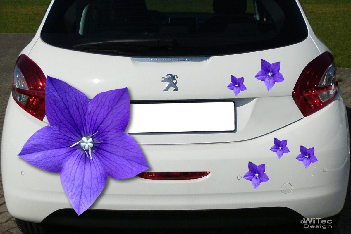 Auto Aufkleber Ballonblume Blumen Autoaufkleber Sticker