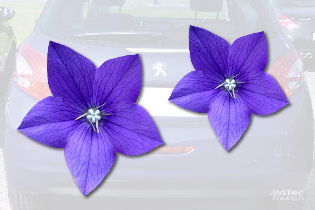 Ballonblume Blumen Auto Aufkleber Autoaufkleber Sticker