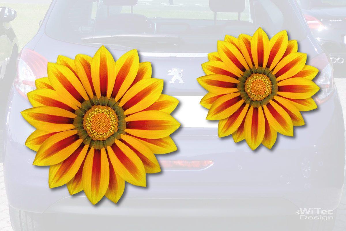 Gazanie Blumen Auto Aufkleber Autoaufkleber Sticker