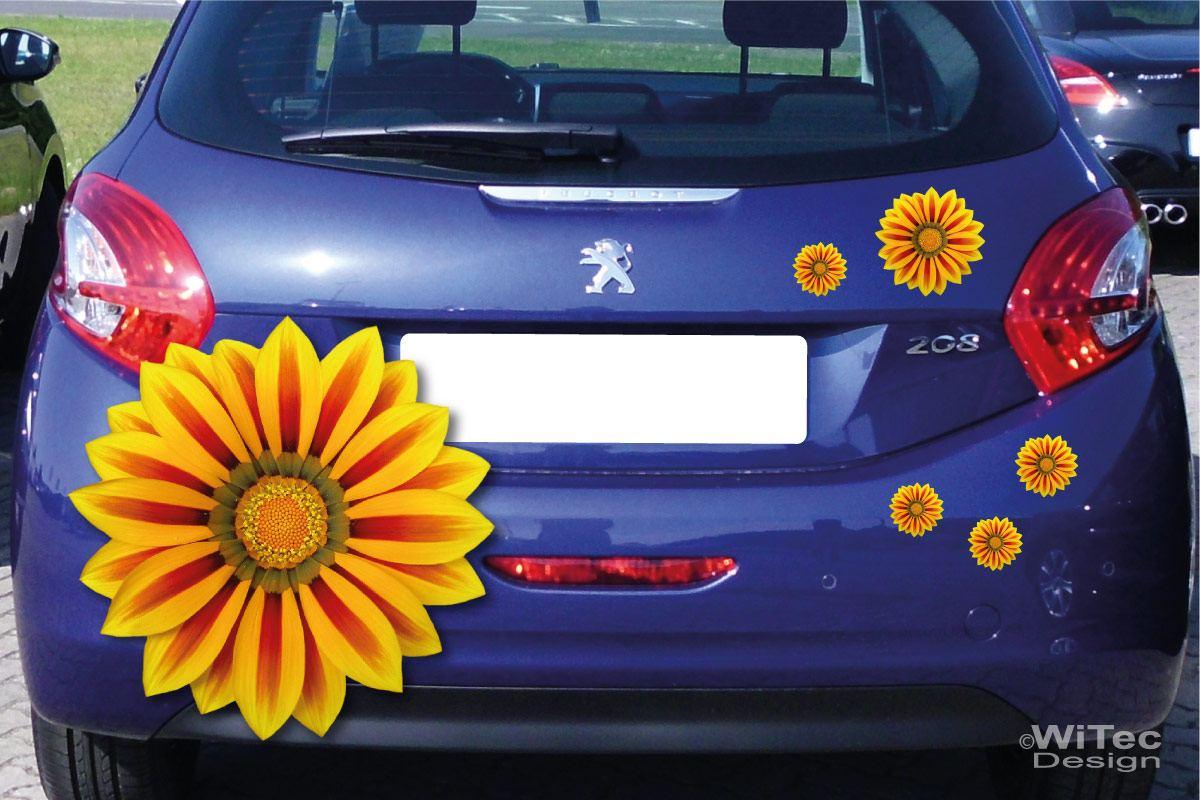 Auto Aufkleber Gazanie Blumen Autoaufkleber Sticker