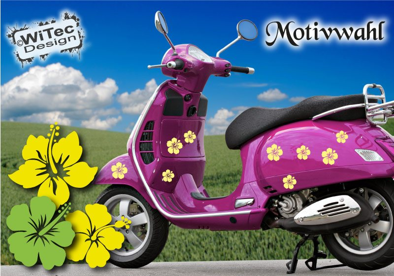 Roller Aufkleber Hibiskus Blumen Sticker Hawaii Set