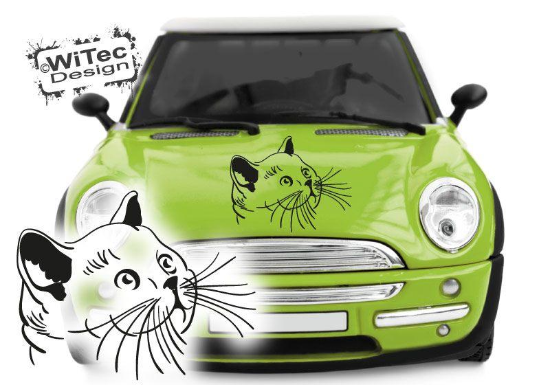 Autoaufkleber Katze Kätzchen Auto Aufkleber Motorhaube