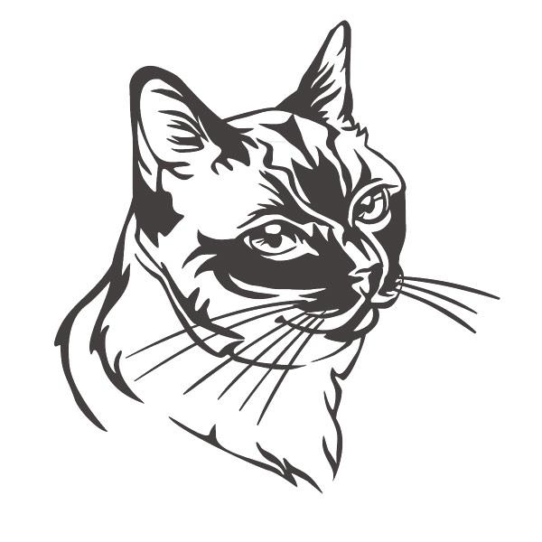 Autoaufkleber Siamkatze Katze Aufkleber Sticker