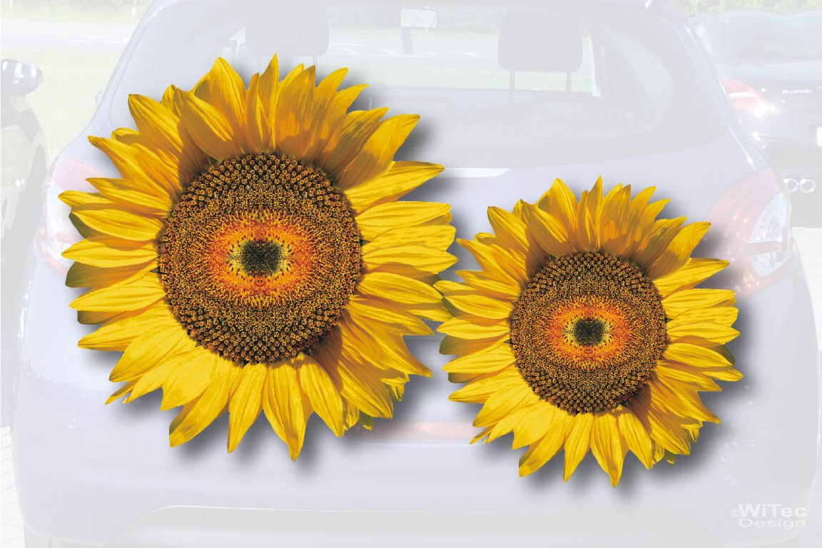 Sonnenblumen Blumen Auto Aufkleber Autoaufkleber Sticker