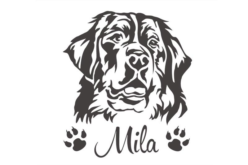 Hundeaufkleber Berner Sennenhund Autoaufkleber Aufkleber