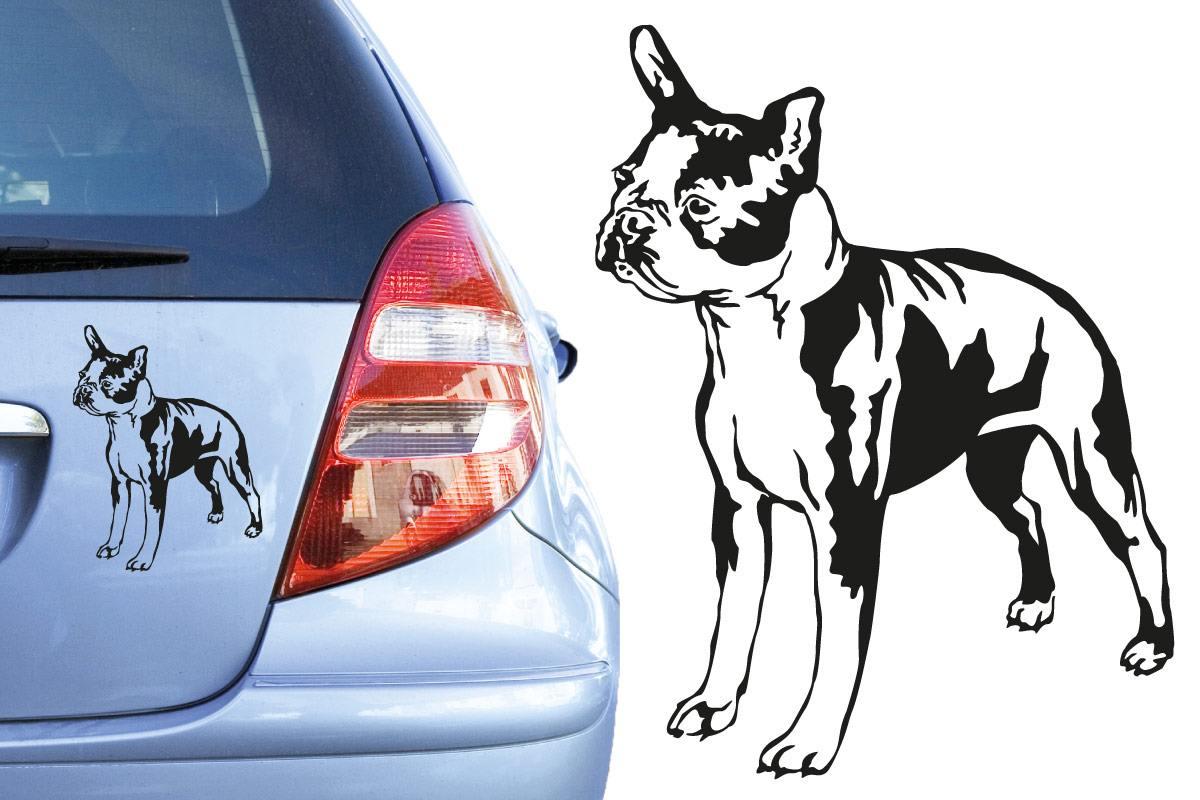 Hundeaufkleber Boston Terrier Aufkleber Auto