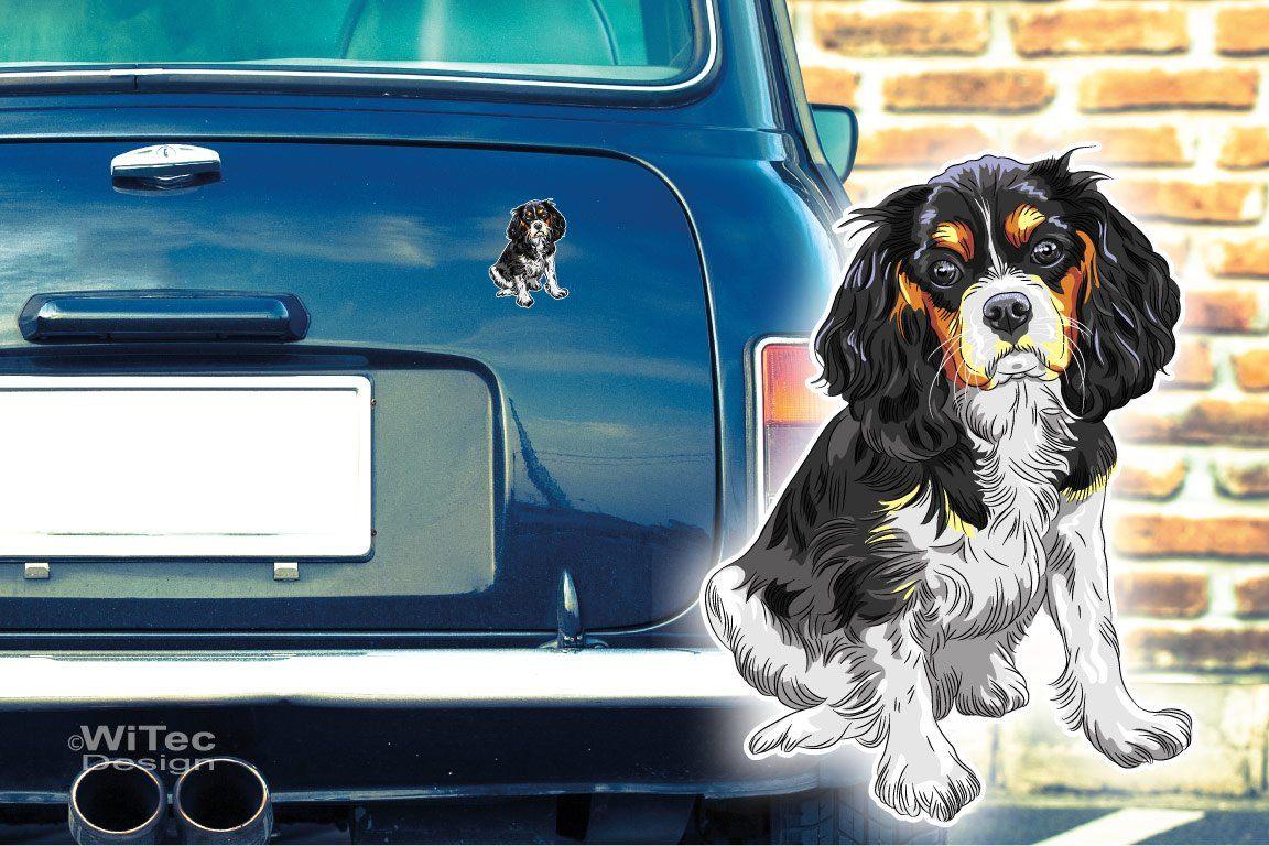 Hundeaufkleber Cavalier King Charles Spaniel Autoaufkleber