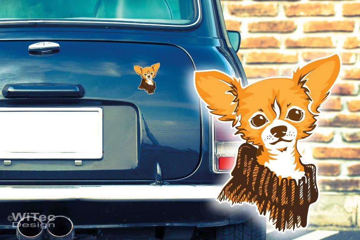 Hundeaufkleber Chihuahua Autoaufkleber