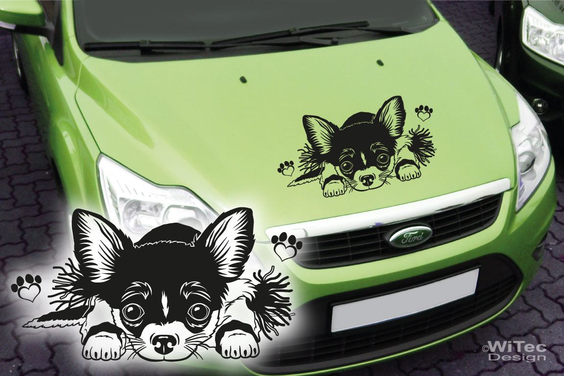 Autoaufkleber Chihuahua Pfoten Hundeaufkleber