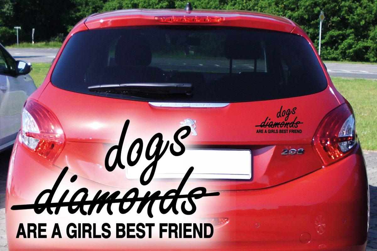 Hundeaufkleber Auto Aufkleber Hund