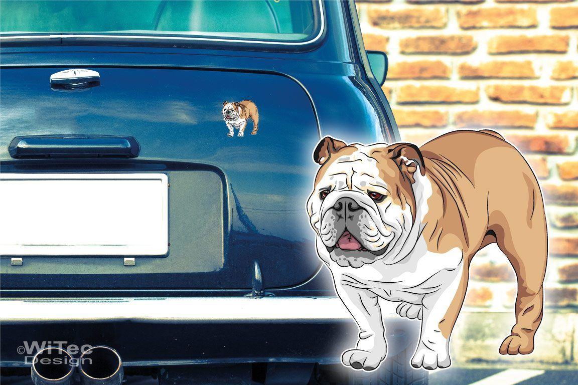 Hundeaufkleber Englische Bulldogge Auto Aufkleber Sticker