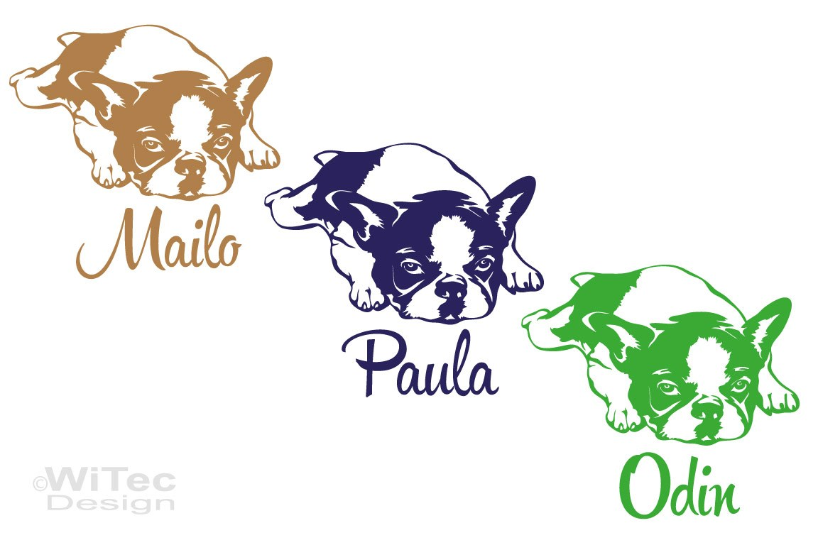 Hundeaufkleber Französische Bulldogge Autoaufkleber