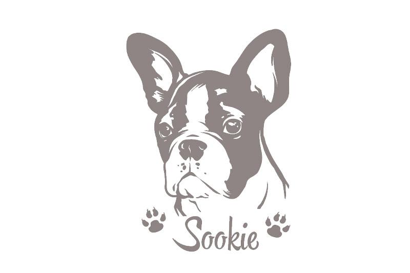 Hundeaufkleber Französische Bulldogge Aufkleber Wunschname