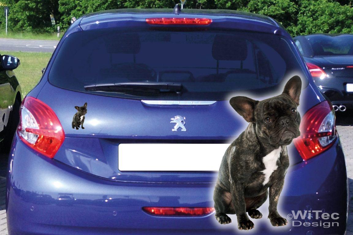 Hundeaufkleber Französische Bulldogge Auto Aufkleber Sticker