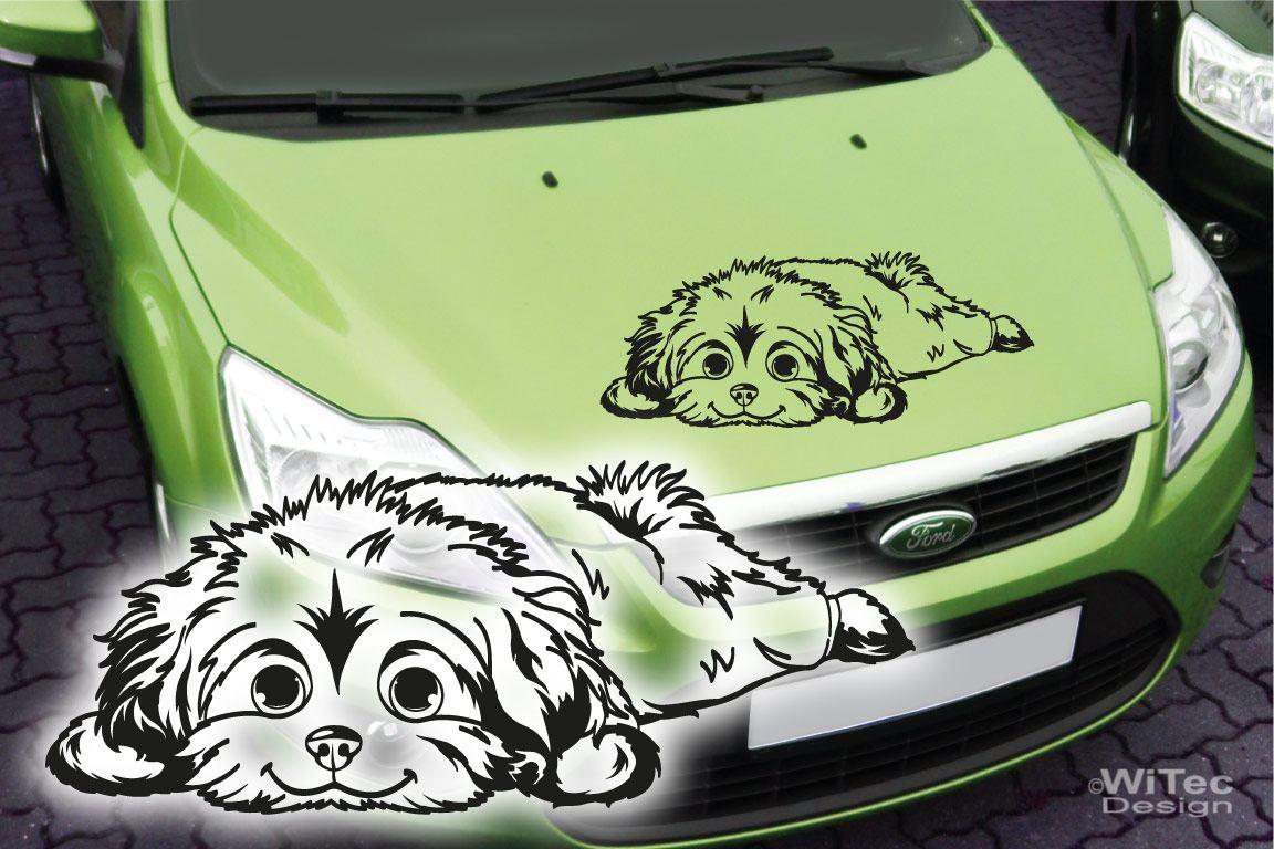 Hundeaufkleber Malteser Auto Aufkleber Sticker