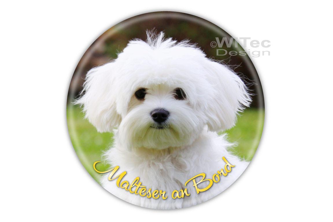 Hundeaufkleber Malteser an Bord Auto Aufkleber