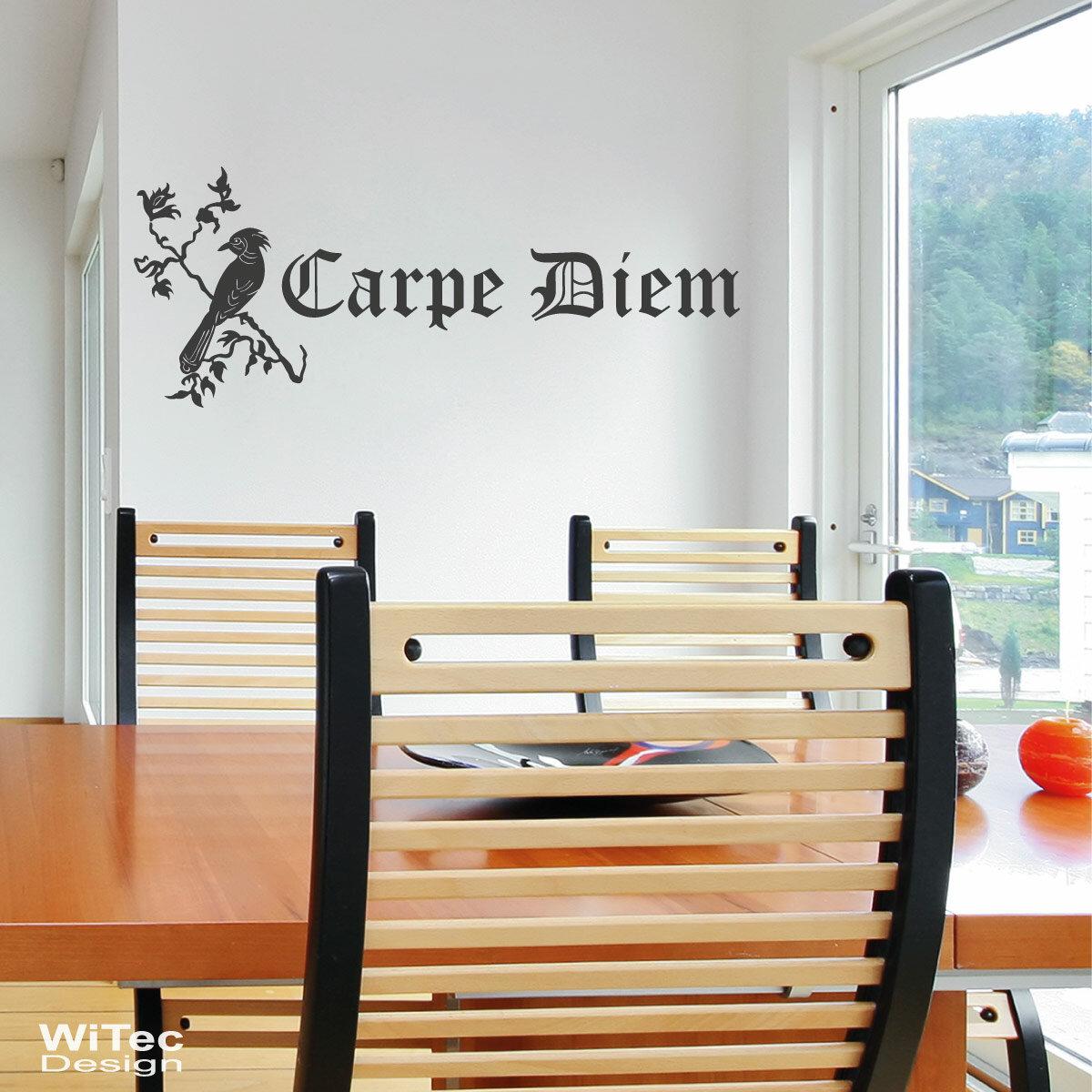 wandtattoo carpe diem vogel wandaufkleber. Black Bedroom Furniture Sets. Home Design Ideas